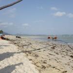Не без этого - пляж HuaThanon