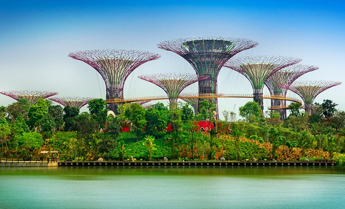 мой singapore 2