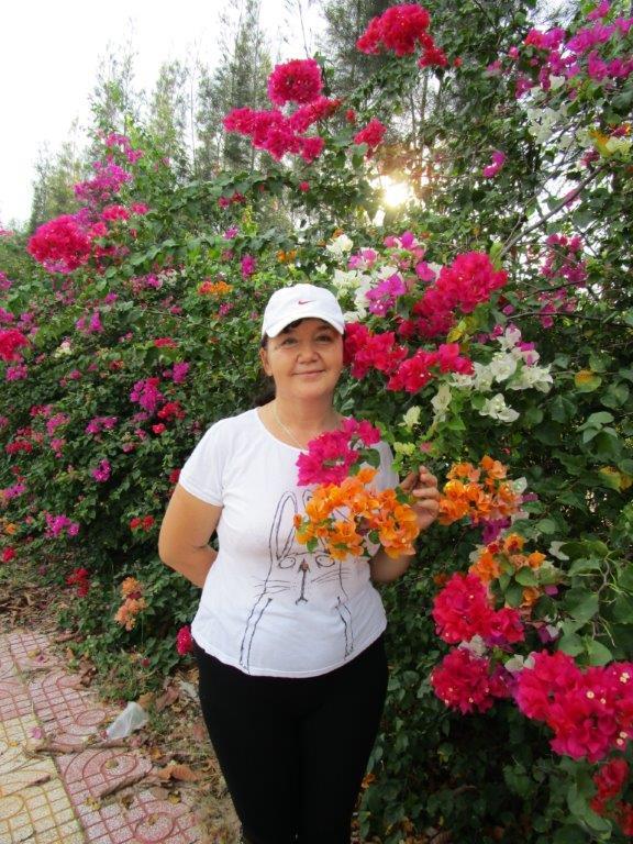 цветы Си Линкса