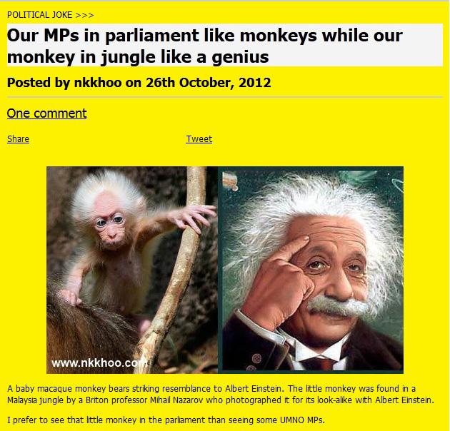 MP monkey