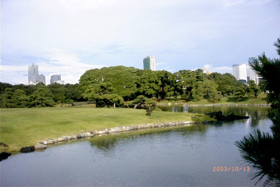 Pond&City