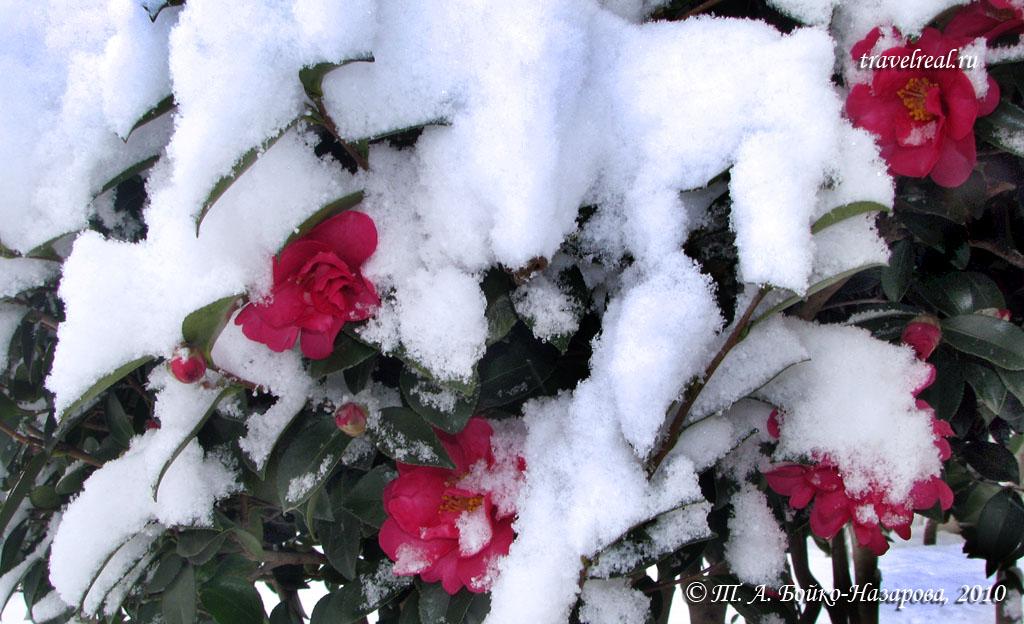 30-12-2007-snow 032