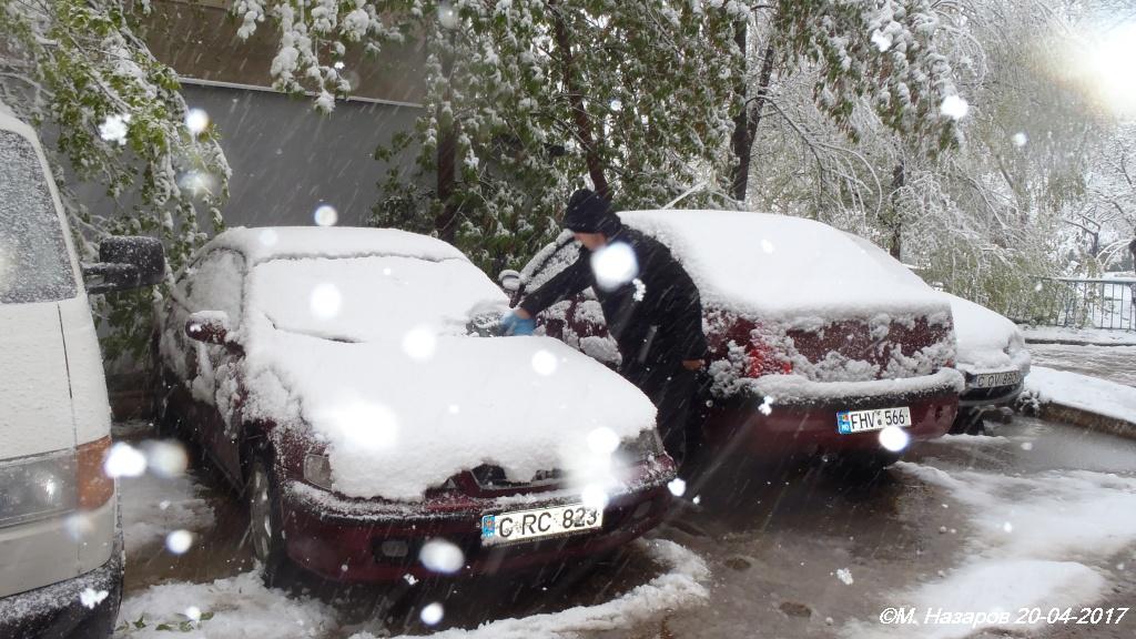 Погода в г.пушкино московской области