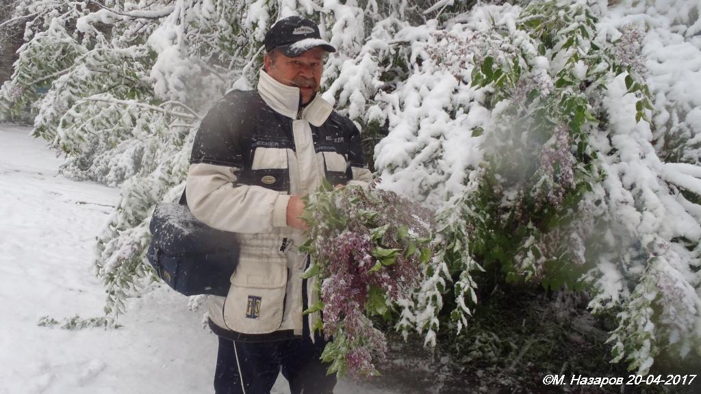 Погода в чебоксарах на 30 июня