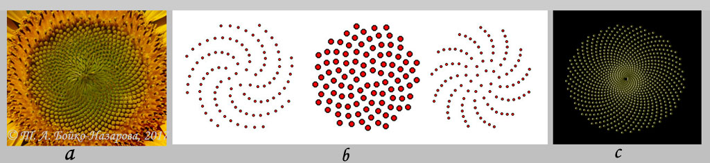 3 spirales 3
