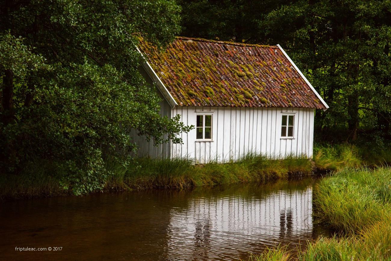 NORWAY-3882