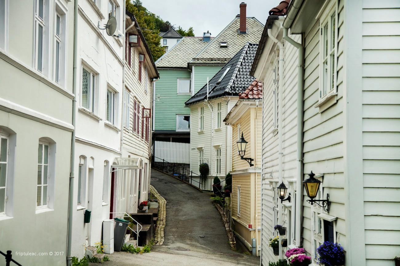 NORWAY-4666