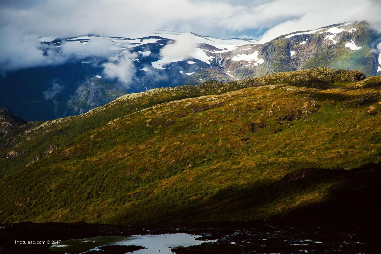 NORWAY-4941