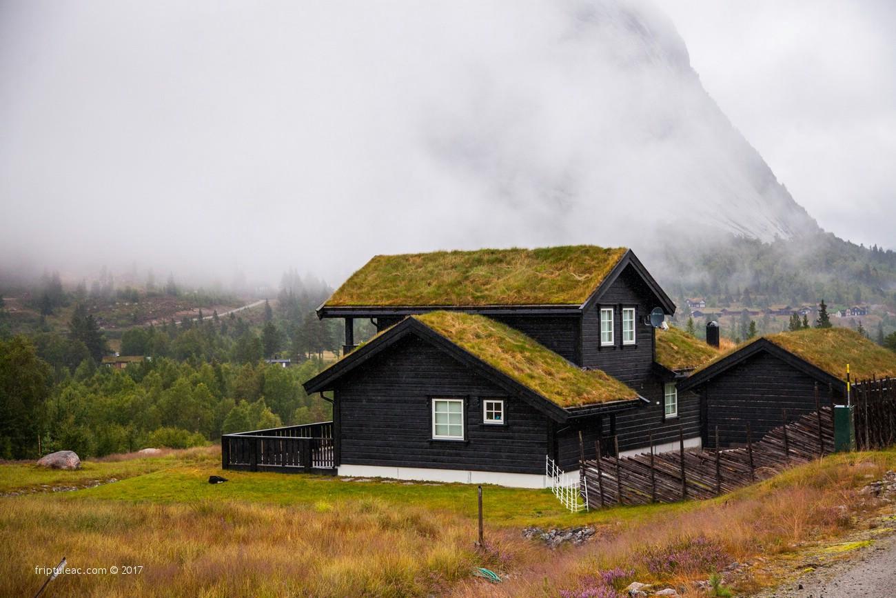 NORWAY-2470