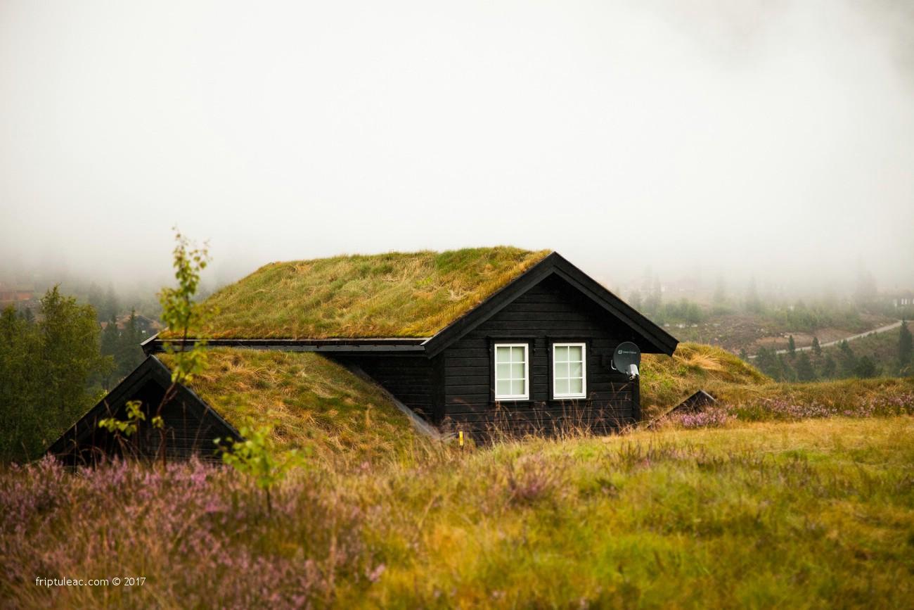 NORWAY-2489