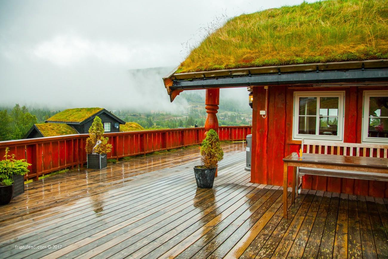 NORWAY-2498