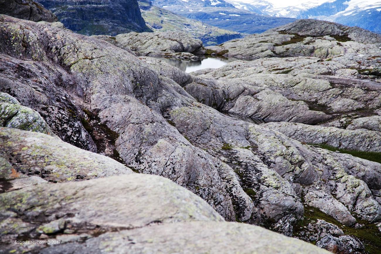 NORWAY-5444