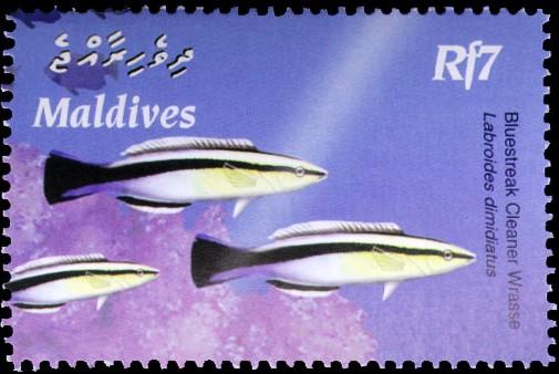 почтовая марка Рыба чистильщик