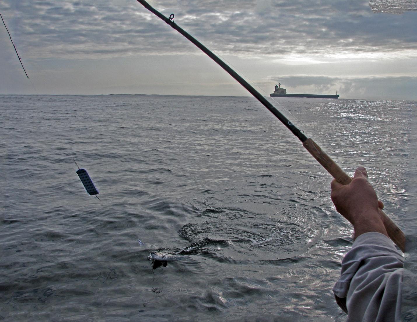 C:\Users\Russ\Desktop\Fishing\Fishing 030.jpg