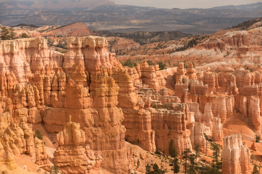 C:\Users\Russ\Desktop\2015-2019 Photos\2016 Canyons journey\Processed JPG\Bryce Canyon\DSC02635.jpg