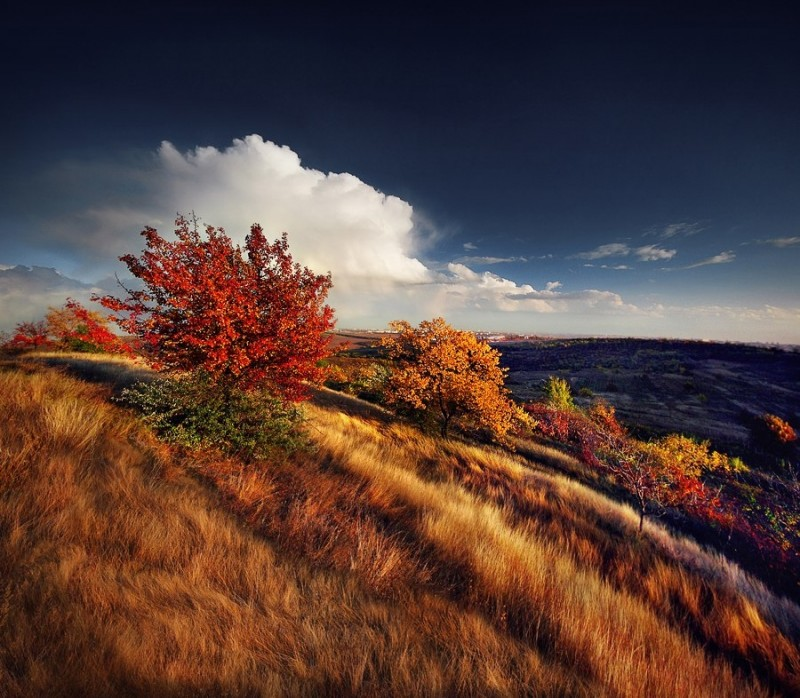 Пейзажи Молдовы от Александру Поповски 7