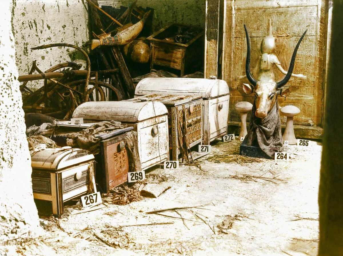 1923 год. Позолоченный бюст Небесной коровы Мехурт и сундуки находились в сокровищнице гробницы