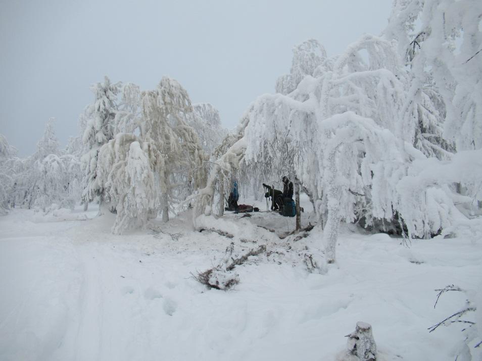 E:\turizzzzm\2021_Северный Урал\день 04_подход под Конжаковский пер\IMG_0644.JPG
